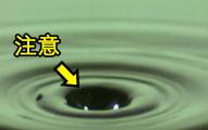 這個攝影團隊以每秒1萬格鏡頭拍攝出人眼看不見的水滴掉落瞬間,拍下的「驚人秘密」會完全顛覆你原有的想像!