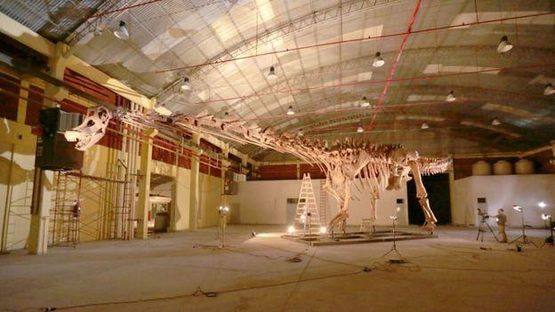 Titanosaur reconstruction