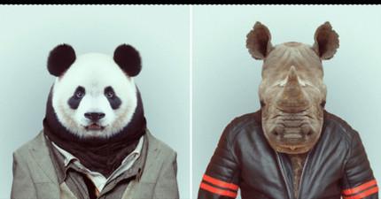 只要選出3種你最喜歡的動物,我們就能準確地說出你是一個怎麼樣的人!