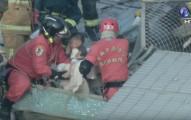 台南維冠金龍大樓倒塌後只聽到壞新聞,但看到影片中畫面就覺得有希望了!