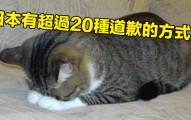 48個證明日本真的有可能是外星人創立的國家的「日本驚奇隱藏真相」!