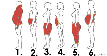 如果想要瘦身最好先搞懂的「6種不同典型肥胖方式」 原來每種肥肉的減法都不同!