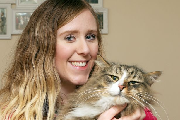 Clive the Norwegian Forest Cat, who went missing 14 months ago, has be found at pet food factory Kennelgate. Pictured - Clive with owner Tanya Irons