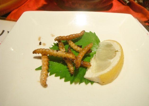 這間在日本的超紅餐廳裡面吃的食材通常都是「會讓我們尖叫到死的生物」,光看到第一道我就想要嘔吐了...