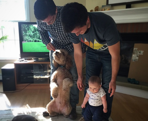Last week, Michael Ratpojanakul and his wife babysat Reed at their apartment. When Stephen Ratpojanakul and his wife came to pick Reed up, the baby kept getting confused as to who was really his dad.