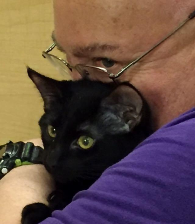 """""""My little kitten is really keeping me going,"""" says Schallman."""
