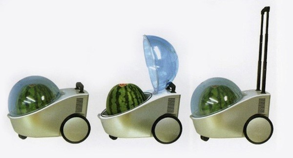 A portable stroller fridge for watermelons.