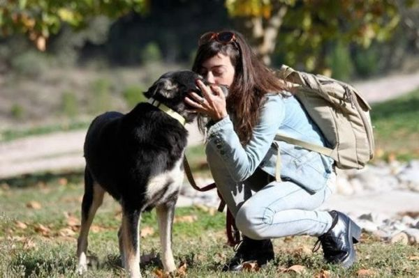 這隻狗狗「營養不良到皮膚開始石化」連獸醫都以為沒救了,但完美康復後的真面目讓網友都嚇呆了!