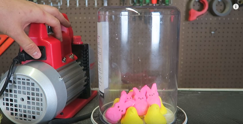 他把兔子棉花糖放到容器裡然後用機器把空氣全都吸出來,我完全不知道會發生這麼爆笑的變化!