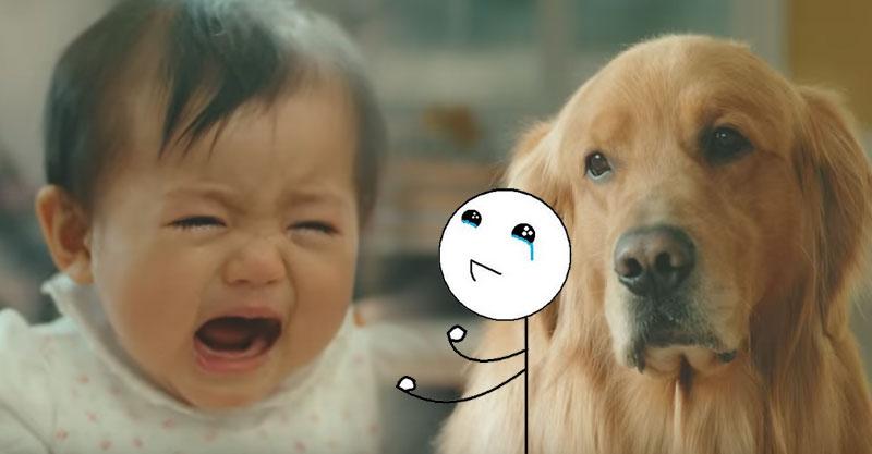 寶寶哭狗狗