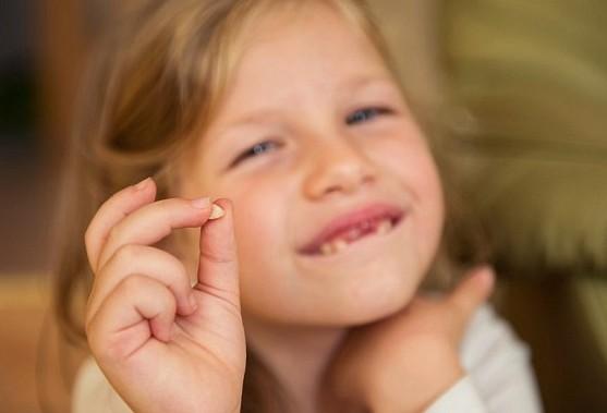 家長都會把小朋友脫落的乳牙丟掉!但它們就是日後能在危急時刻用到的「重要救命關鍵」!