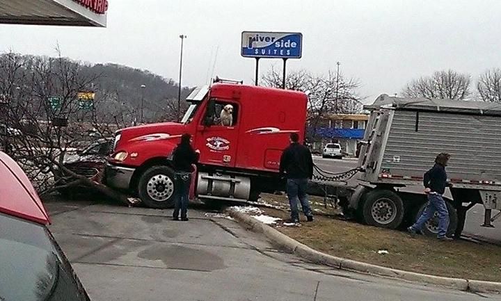 大卡車突然失控衝撞對向加油站嚇壞眾人,但一看到肇事駕駛後可愛到根本就無法生氣!