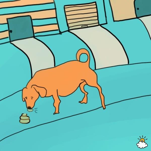 10個很多主人都看不懂還對狗狗生氣的「各種狗狗崩壞行為」!