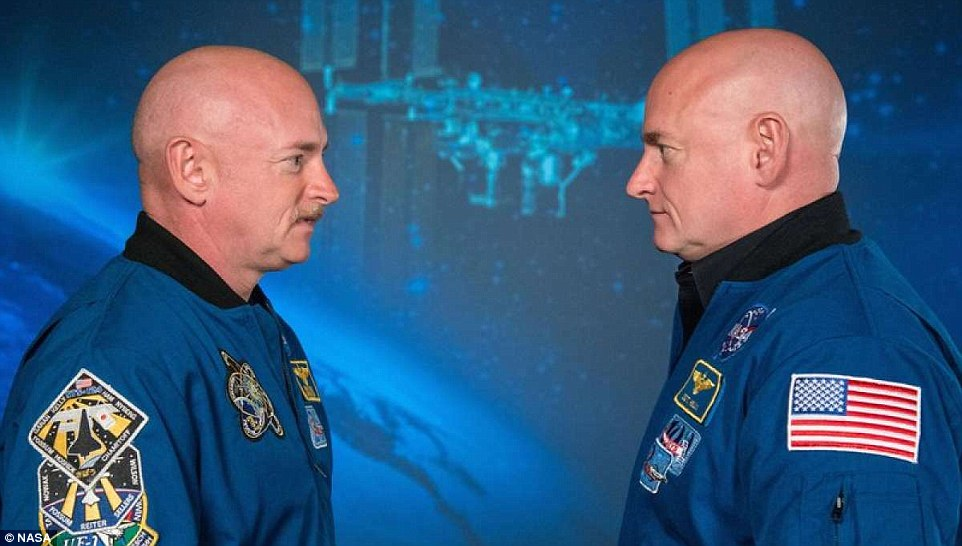 Nasa's stretched astronaut, Scott Kelly (right), has now shrunk back to normal size after gaining two inches in space. Mark Kelly (left), a former astronaut and Scott's identical twin, said he went back-to-back with his brother an hour after his return. At the time, Kelly had grown 1.5 inches taller after spending 340 days in space. This image was taken before the Kelly went into orbit