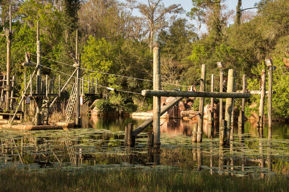 And now the park's diving bridges and platforms are still.