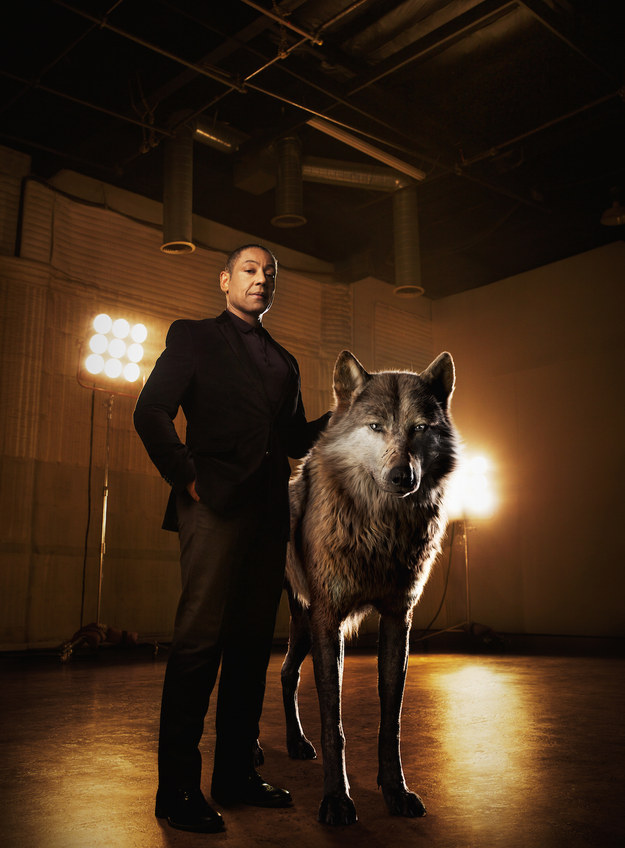 Giancarlo Esposito voices Akela, the alpha-male wolf who accepts Mowgli but also fears he'll endanger the pack.