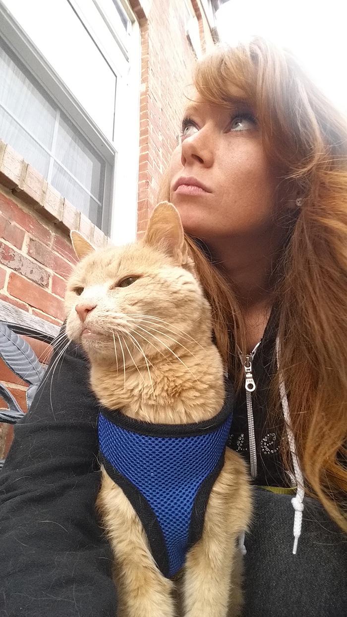 這隻相當於人類102歲的貓爺爺因腎衰竭被拋棄,但沒想到這卻讓他得到了更美好的最後日子!