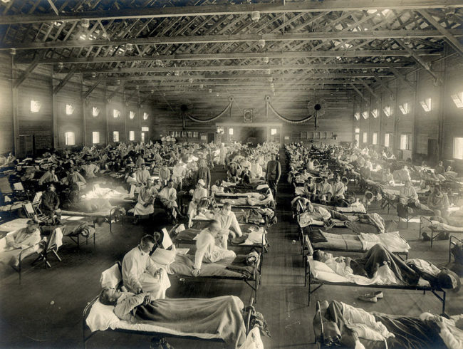 The Spanish Flu caused nearly one third of all deaths in WWI.