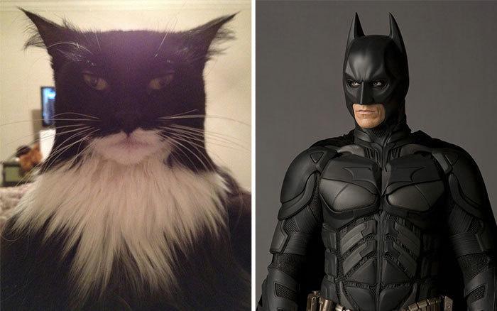 Batman.