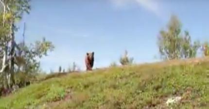 男子在森林走到一半就驚恐撞見一頭有攻擊性的熊,接下來的超驚險進展讓網友都為他捏一大把冷汗...