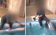 監視器拍到這名男子跟海豚有性行為,在你開始說什麼「不倫」之前請先聽聽看這背後的真相好嗎?