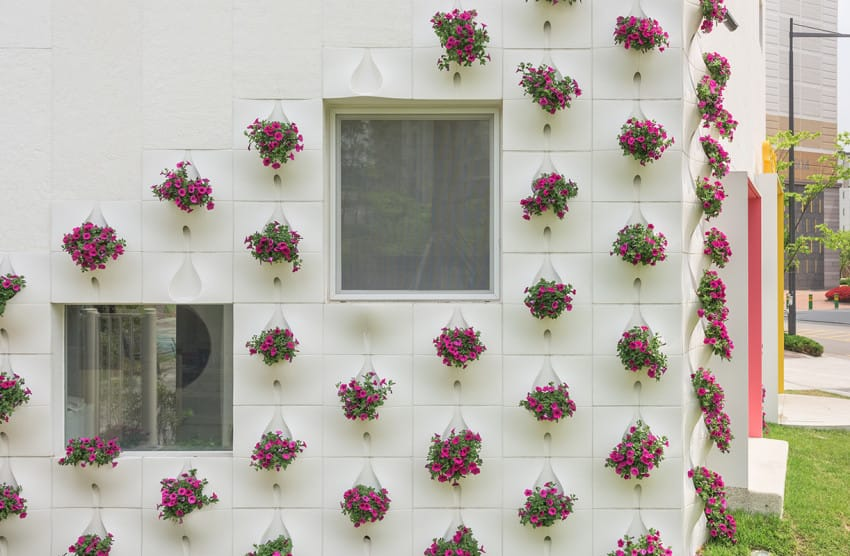 他們在房子的牆壁裝上造型奇特的「口袋」時我還匪夷所思,然後一到下雨天…大家都看到捨不得眨眼睛啊!