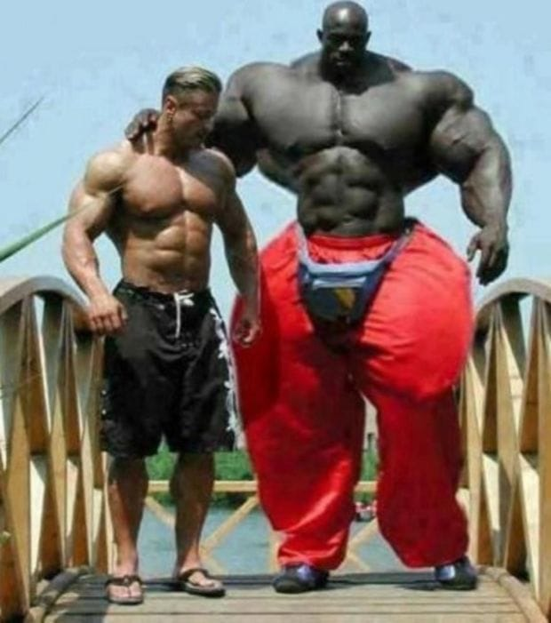 funny-muscle-pictures-2
