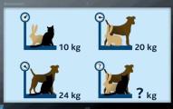 據說能快速算出「貓+狗+兔=幾公斤」的人就是天才。很多解了半天的人一看到答案都吐血了!