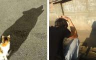 25張會「讓你終於看到另一半世界」的神奇影子照片。