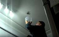 這就是為什麼你想要抓蜘蛛時絕對不能不聽小朋友的意見。