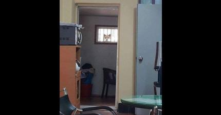 他說隔壁鄰居老是偷窺他時大家都勸他報警,但他公布偷窺狂真面目時網友都大喊「求偷窺我!」