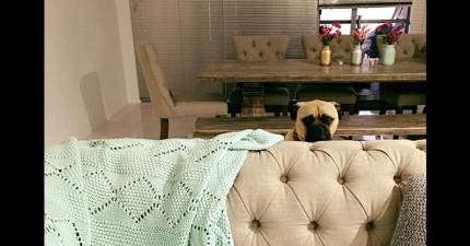 她在家老是覺得有視線盯著自己,當拍下所有被跟蹤恐怖景象時,網友都說「快跟蹤我!」