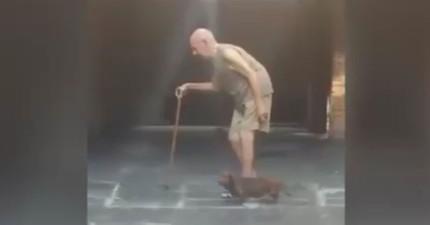 這位龜速的老爺爺牽著愛犬出去散步,看到愛犬的「速度同步」的舉動讓網友都感動到說不出話了!