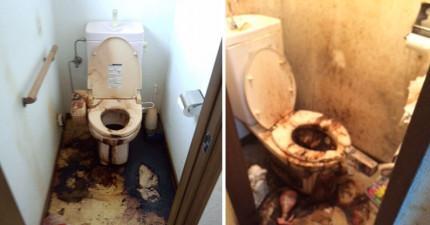 這兩間廁所很噁心,但你必須立刻要知道它們背後的重要嚴重意義!