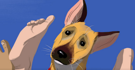 狗狗到底會不會在意主人在面前愛愛?狗狗心裡面的想法其實是這樣!