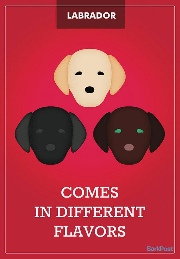 11張「誠實到連你家狗狗都會捂著臉害羞跑走」的完美狗種註解海報