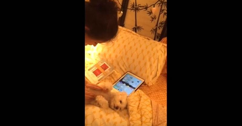 她跟小狗寶寶唱歌哄她睡覺,每當她唱到一半停下來時,那畫面已經足夠我開心到下週五了!