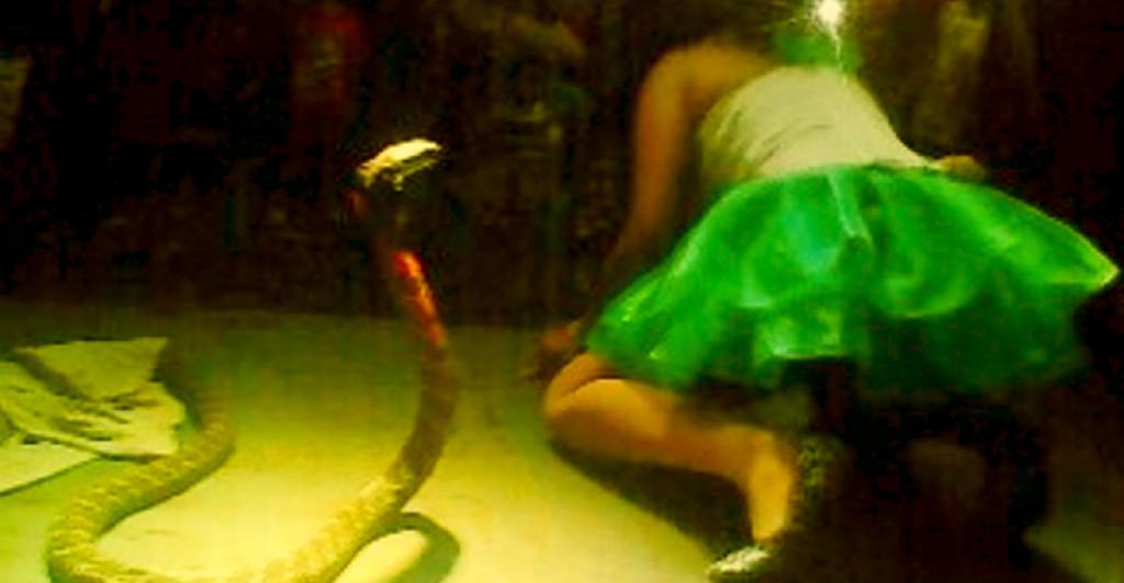 indonesian-singer-bitten-snake-stage-kept-singing-passing-away