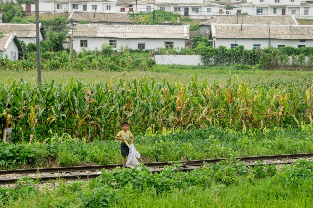 the-train-chugged-along-giving-chu-snapshots-of-everyday-life-this-boy-was-collecting-corn-cobs-beside-the-tracks-1