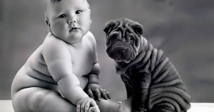 狗狗跟人之間的連結有多強大?實驗證明結果狗狗已經愛你愛到「連內心都開藍牙跟你徹底同步了」!