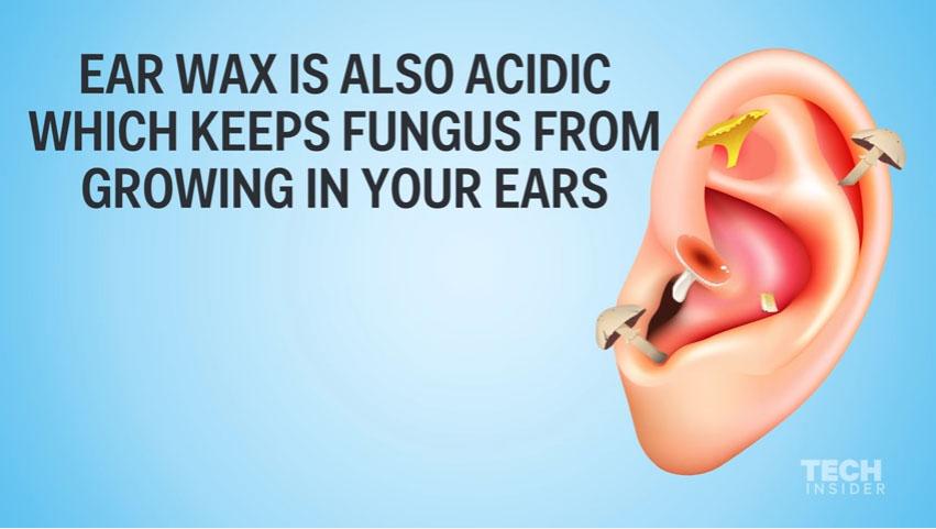 這種嚴重後果就是你為何「千萬不能用棉花棒掏耳朵」!