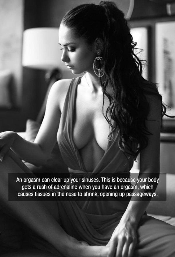 25張「把性感美女和愛愛冷知識」結合在一起的養眼圖會讓你愛火燃燒一整天!