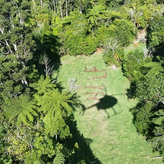 """A company, Amalgamated Helicopters, said in a Facebook post that two of its pilots spotted the pair and signs they had made using branches to spell out """"HELP."""""""