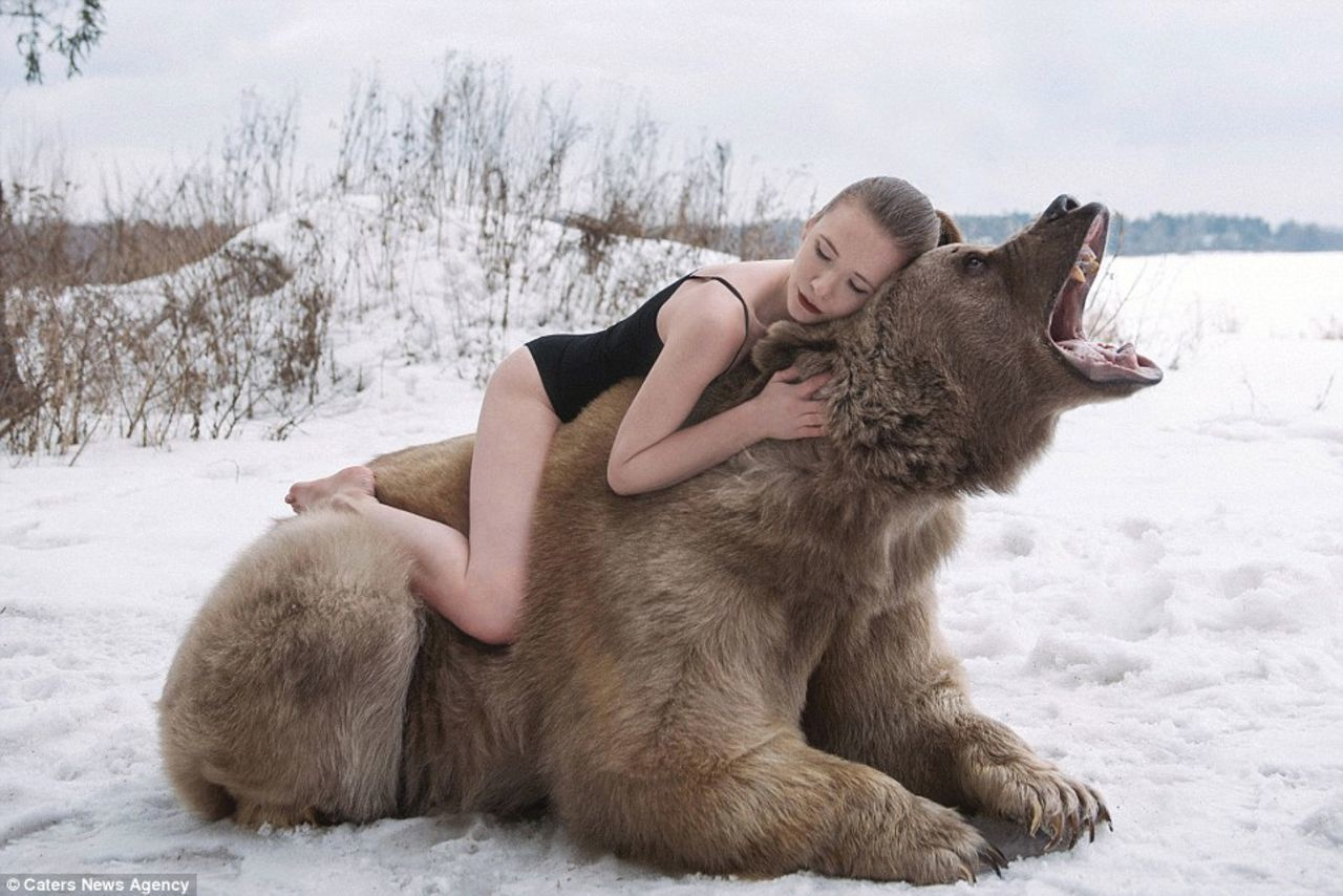 Bears must be really friendly in Russia.