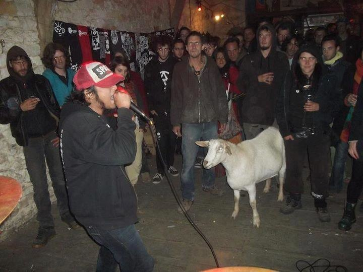 Because there is no party till the local goat shows up.