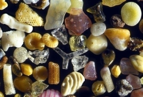 This is what sand looks like under a microscope.