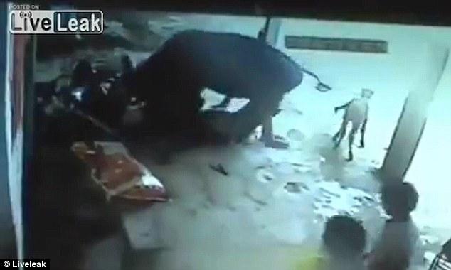這名可憐的少女慘遭兩名男子暴力砍殺,可惡到連這頭「牛都看不下去」衝上前解救!