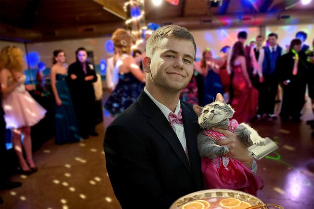 他因為不想要跟任何女生去舞會,因此帶了他的貓去。拍的照片證明貓咪其實才是最棒的舞伴!