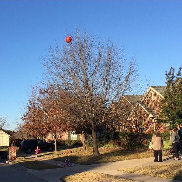The dad who kicked his daughter's hippity hop ball into their neighbor's tree: