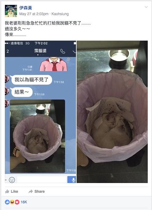 這名太太怎麼找都找不到家貓,結果傳給老公的Line照片讓1.6萬網友大讚!